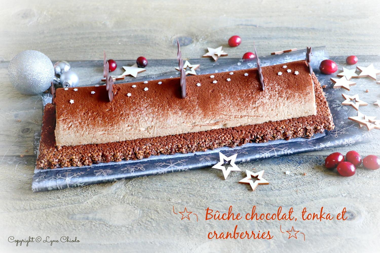 Epices & moi - Bûche au chocolat, mousse tonka et cranberries
